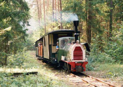 Kolejka w lesie