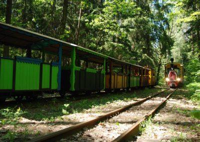 Wigierska Kolejka Wąskotorowa - postój w lesie